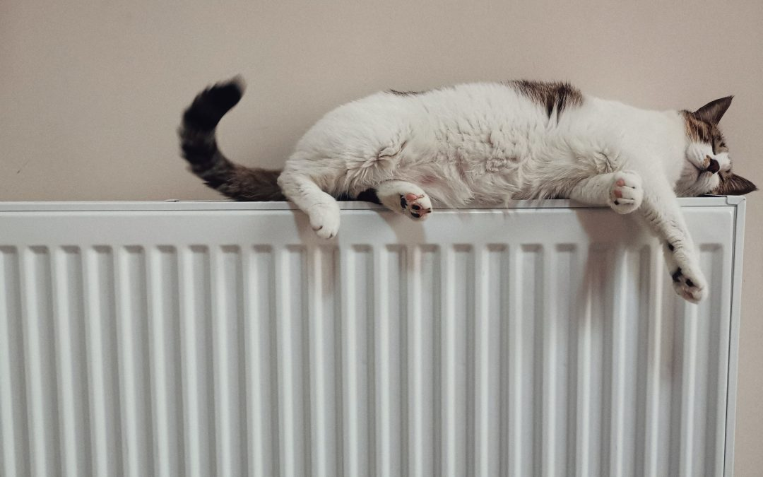 Top tips for choosing the right central heating system